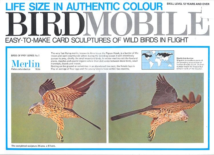 birdmobile falcon