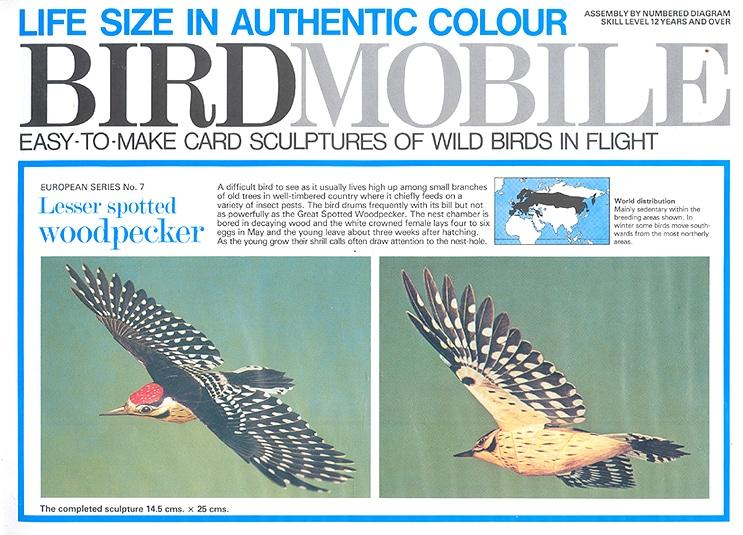 birdmobile lesser spotted woodpecker