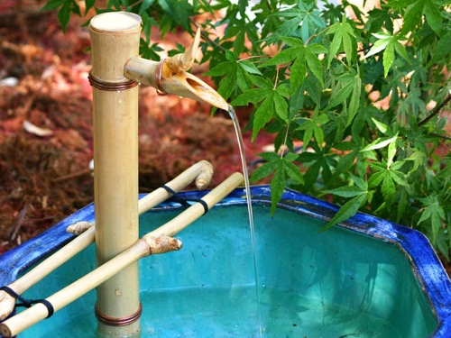 bamboo accents spout