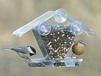 Ascpects Window Cafe Bird Feeder