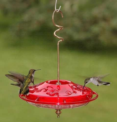 just ruby feeder image hanging for hummingbird splendid love i sipper ideas medium beautiful feeders the