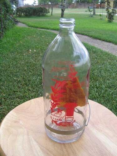 Best-1 Hummingbird Feeder Replacement Bottle, 32-Ounce