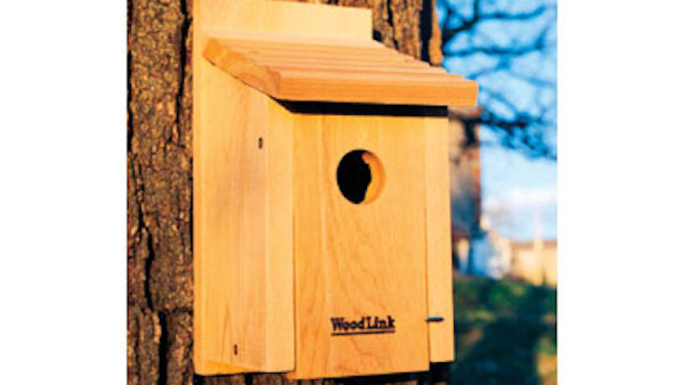WoodLink Bluebird House BB1