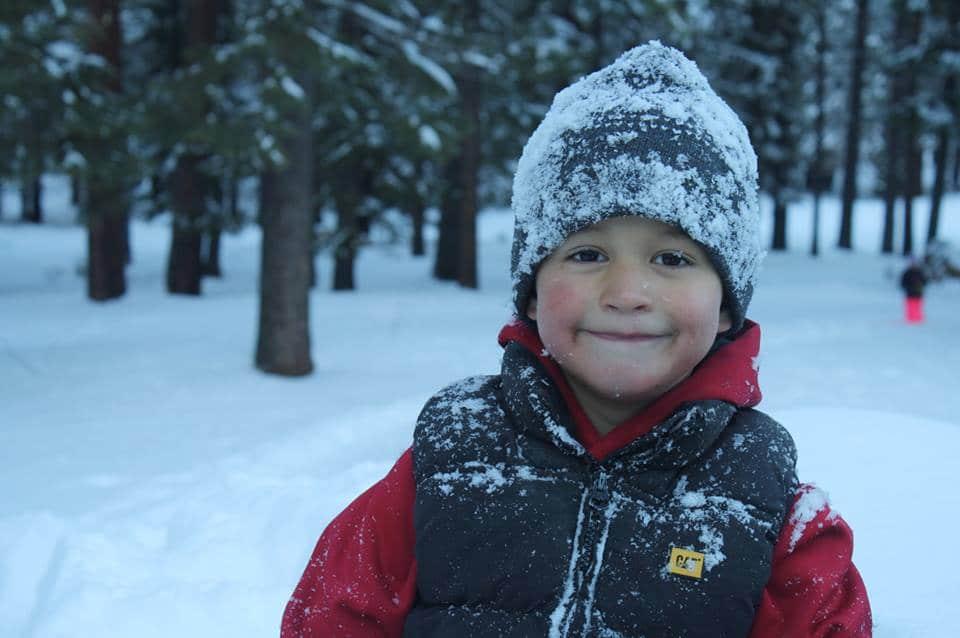Leo in Snow