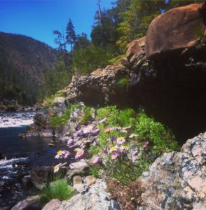 Adventure at North Fork Smith River Swimming Holes