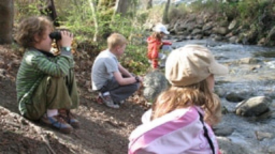 Birdwatching-in-Lithia-Park1